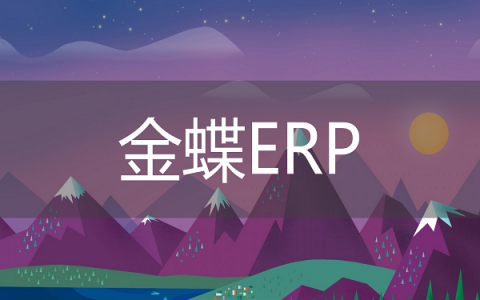 金蝶ERP